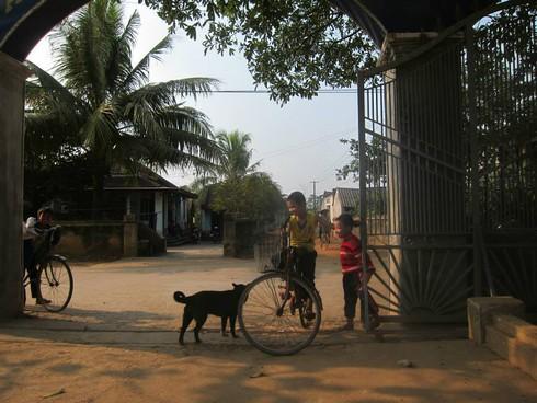 Cuộc sống mến yêu qua mắt nhìn của trẻ em nông thôn Việt Nam - ảnh 17
