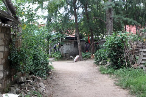 Nghệ An: Có một khu ổ chuột giữa lòng thành phố - ảnh 1
