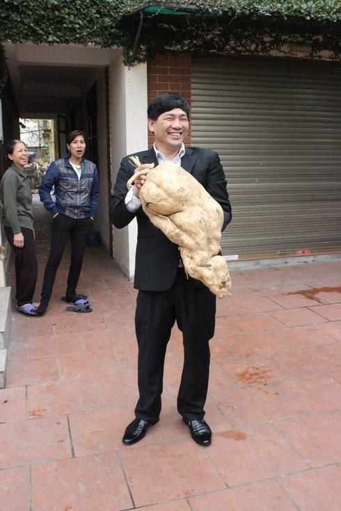 Xôn xao hiện tượng củ đậu nặng gần 15 kg - ảnh 4