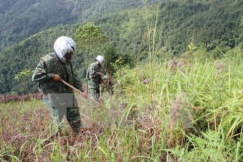 Toàn bộ 63/63 tỉnh thành phố Việt Nam đều bị ô nhiễm bom mìn - ảnh 1