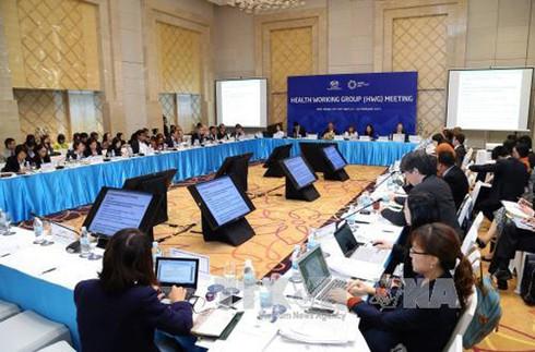 Cuộc họp Nhóm công tác Y tế SOM 1: Việt Nam nhận được sự ủng hộ cao - ảnh 1