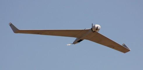 Kiểm tra sức mạnh máy bay không người lái Israel Việt Nam vừa mua - ảnh 1