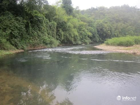 Thanh Hóa: Lấy mẫu kiểm tra tìm nguyên nhân cá chết trắng 10km trên sông Âm - ảnh 1