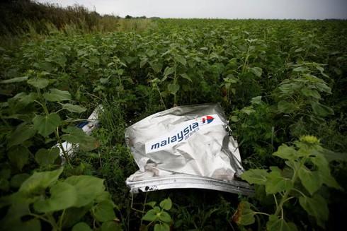 Điều tra viên Hà Lan tuyên bố MH17 do tên lửa Nga bắn rơi - ảnh 1