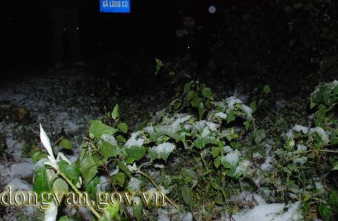Tuyết rơi sớm ở Đồng Văn: Dày nhất trong vòng 10 năm - ảnh 8