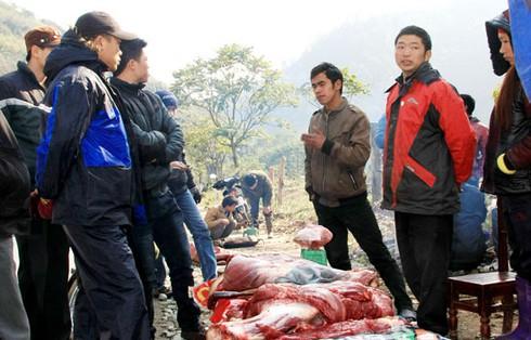 Xẻ thịt trâu chết rét vì mưa tuyết tại Sa Pa - ảnh 1