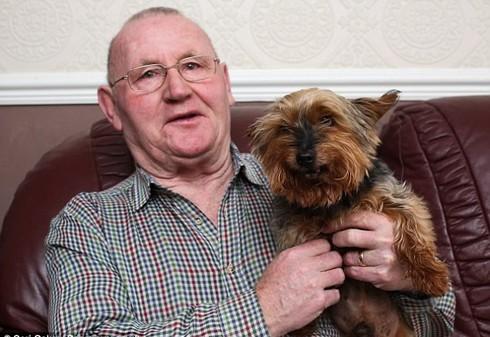 Chú chó già nhất nước Anh? - ảnh 1