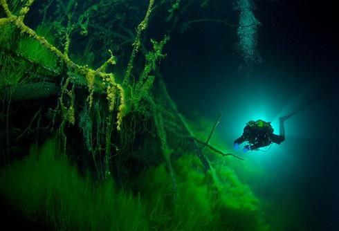 Hồ không đáy Goluboe: Bí ẩn đáng sợ bậc nhất trên Trái Đất - ảnh 4