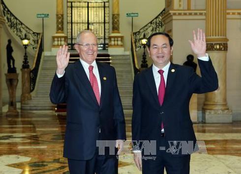 Chủ tịch nước Trần Đại Quang hội đàm với Tổng thống Peru - ảnh 1