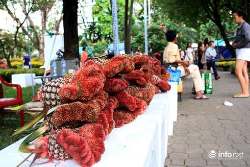 Du khách nước ngoài ngẩn ngơ trước rừng hoa bán Tết ở TP.HCM - ảnh 21