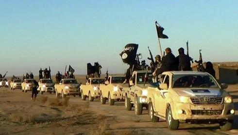 Tình hình Syria mới nhất ngày 11/6 - ảnh 1