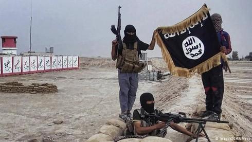 Tình hình Syria 6/12: Bộ trưởng dầu mỏ IS bị tiêu diệt - ảnh 2