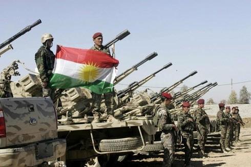 Tình hình Syria mới nhất ngày 7/5 - ảnh 2
