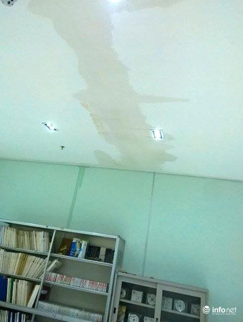 Đà Nẵng: Thư viện trọng điểm mới khánh thành đã thấm dột nặng! - ảnh 3