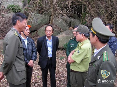 Tạm đình chỉ Hạt trưởng, Hạt phó Kiểm lâm vụ phá rừng Sơn Trà - ảnh 1
