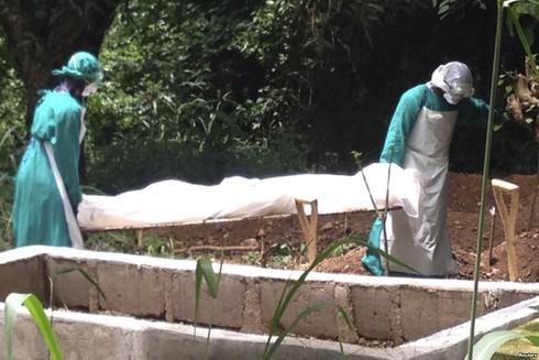 Bản tin đại dịch Ebola ngày 7/8: Hơn 100 cán bộ y tế nhiễm vi rút - ảnh 1