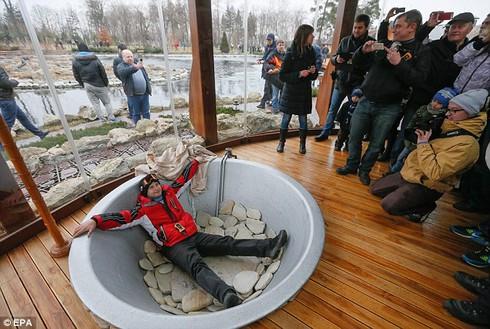 Cựu Tổng thống Yanukovych đang trốn ở đâu? - ảnh 3