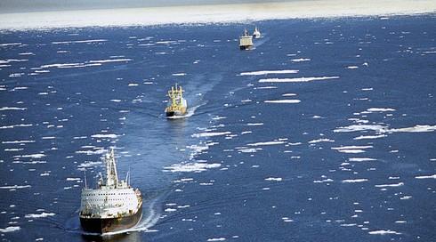 Nga mời Trung Quốc tham gia dự án đường biển Bắc Cực - ảnh 1