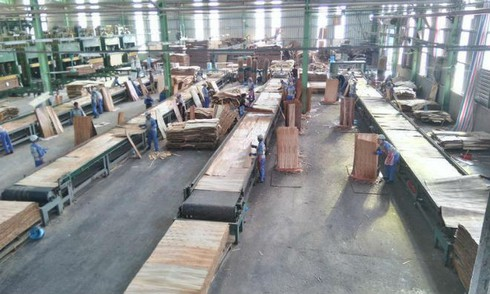 Xuất khẩu gỗ sang Anh lo lắng hậu Brexit - ảnh 1