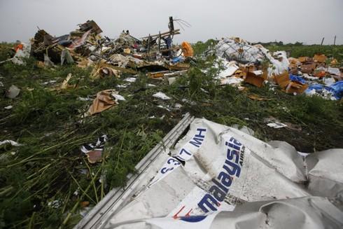 MH17: Kết quả điều tra cuối cùng sẽ có vào ngày 10/8 tới - ảnh 1