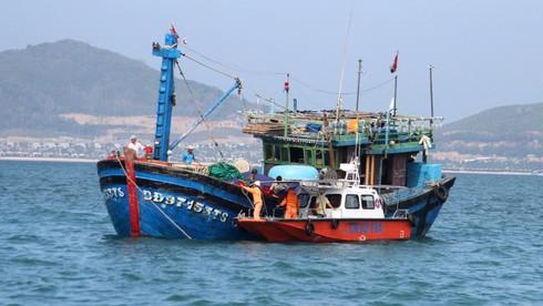 Cứu tàu cá với 12 thuyền viên bị nạn ngoài khơi Nha Trang - ảnh 4