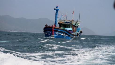 Cứu tàu cá với 12 thuyền viên bị nạn ngoài khơi Nha Trang - ảnh 3