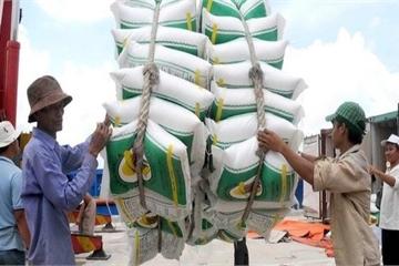 Thủ tướng yêu cầu Bộ Công Thương khẩn trương tháo gỡ khó khăn cho xuất khẩu gạo