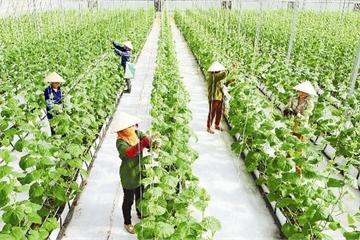 Bước chuyển mình trong xây dựng nông thôn mới ở Thanh Hóa