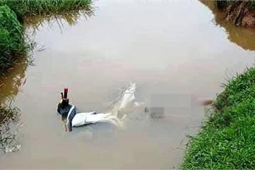 Phát hiện nam thanh niên tử vong cạnh xe máy dưới mương nước