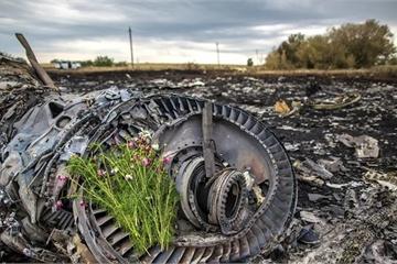 """Nhà báo Hà Lan công bố """"sốc"""" về tài liệu vụ máy bay MH17 bị bắn rơi"""