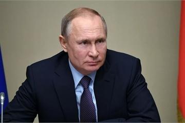 Hé lộ nguyên nhân Tổng thống Nga Putin không cần xét nghiệm Covid-19