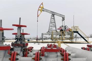 """Chiến tranh dầu mỏ với """"gấu Nga"""" sẽ là tự sát?"""