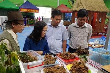 Huyện miền núi Quảng Nam khởi sắc từ nông thôn mới