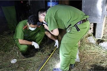 Đắk Lắk: 8 bị cáo hầu tòa trong vụ nổ súng khiến 8 người thương vong