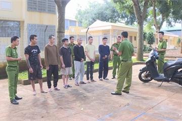 Tạm giữ 6 đối tượng chuyên trộm xe SH tại Đắk Lắk