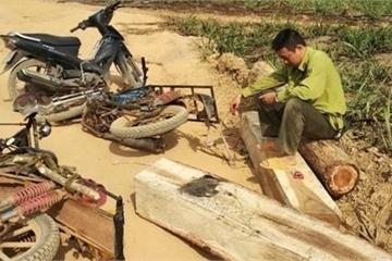 """Đắk Lắk: Khởi tố đối tượng """"ném gậy"""" khiến cán bộ kiểm lâm bị thương"""