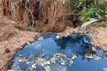 Đắk Lắk: Người dân khốn khổ vì công ty xả trộm nước thải đen kịt, nhầy nhụa