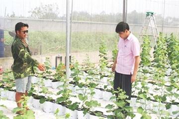 Phú Thọ: Hai chàng trai 8x chung chí hướng khởi nghiệp trên mảnh đất quê hương
