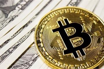"""Một đồng tiền ảo giá 250 triệu, còn ai dám tuyên bố """"Hold to Die"""""""