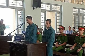 Bình Thuận: Người ném bom xăng đốt xe cảnh sát rút kháng cáo tại tòa