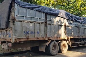 Đổ trộm 20 tấn rác thải, tài xế bị rắn độc cắn khi trốn công an