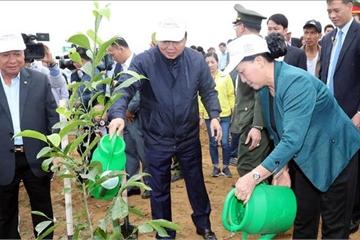 Chủ tịch Quốc hội tham dự Lễ ra quân hưởng ứng Tết trồng cây tại Hòa Bình