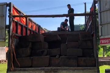 Kon Tum: Bắt xe vận chuyển gỗ lậu trong đêm