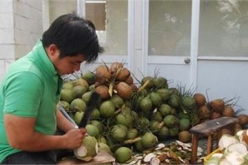 Trà Vinh: Thêm 2 doanh nghiệp được hỗ trợ vốn trong lĩnh vực nông nghiệp