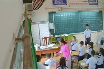 Sở GDĐT TPHCM yêu cầu quận Tân Phú xử lý nghiêm khắc cô giáo đánh học sinh