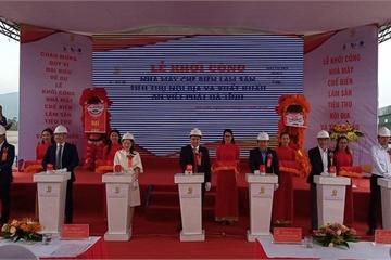 Hà Tĩnh: Khởi công xây dựng nhà máy chế biến lâm sản trên 1.000 tỷ đồng