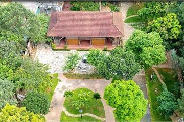 Đồi Bông village – thiên đường nghỉ dưỡng giữa lòng Hà Nội
