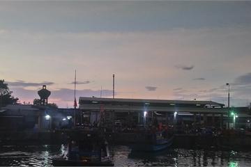 Huế: Tấp nập ở cảng cá Thuận An, 'món quà từ biển' lúc bình minh
