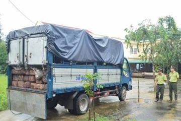 """Bắt xe chở gỗ lậu chạy vào đường làng để """"né"""" kiểm lâm"""