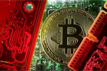 Vì sao bitcoin đột ngột tăng giá?